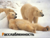 post-15109-1225799915_thumb.png